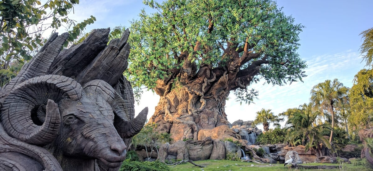 An Expert S Guide To Disney S Animal Kingdom Theme Park