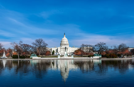 Washington D.C. Excursions